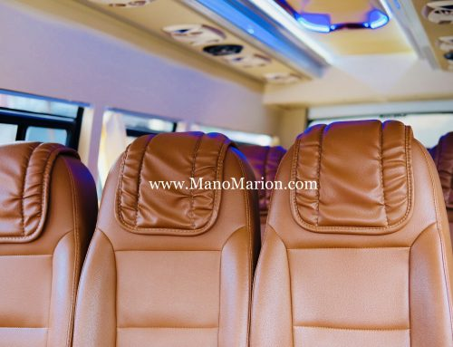 Interior Elf Long 19 Seat